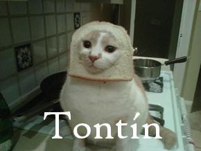 7_tontin