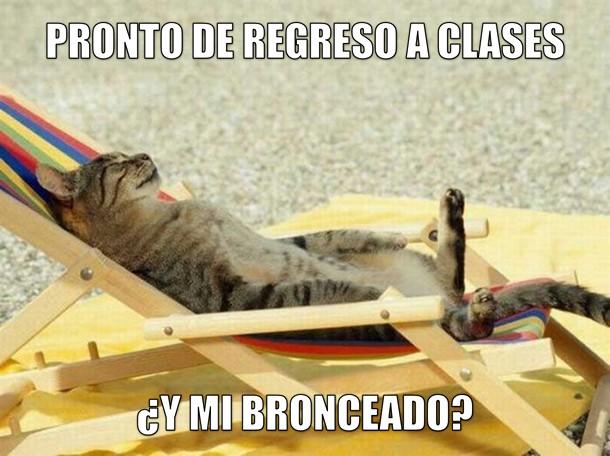 miaucoles_pronto_de_regreso_a_clases_y_mi_bronceado