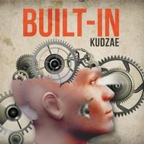 built_in_kudzae