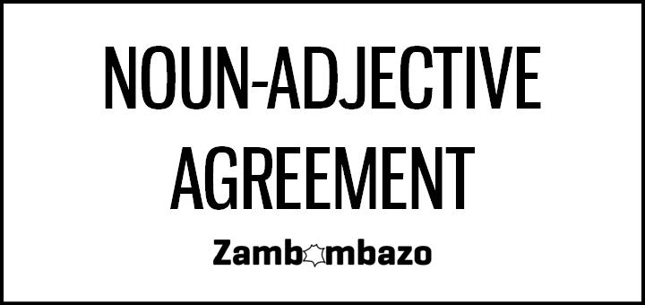 Noun-Adjective Agreement
