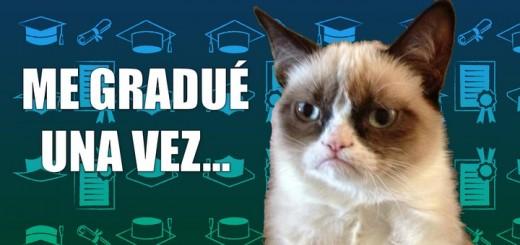 miaucoles_gato_grunon_me_gradue_una_vez_fue_horrible-f2