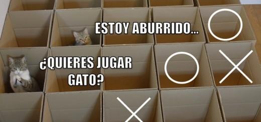miaucoles_estoy_aburrido_quieres_jugar_gato
