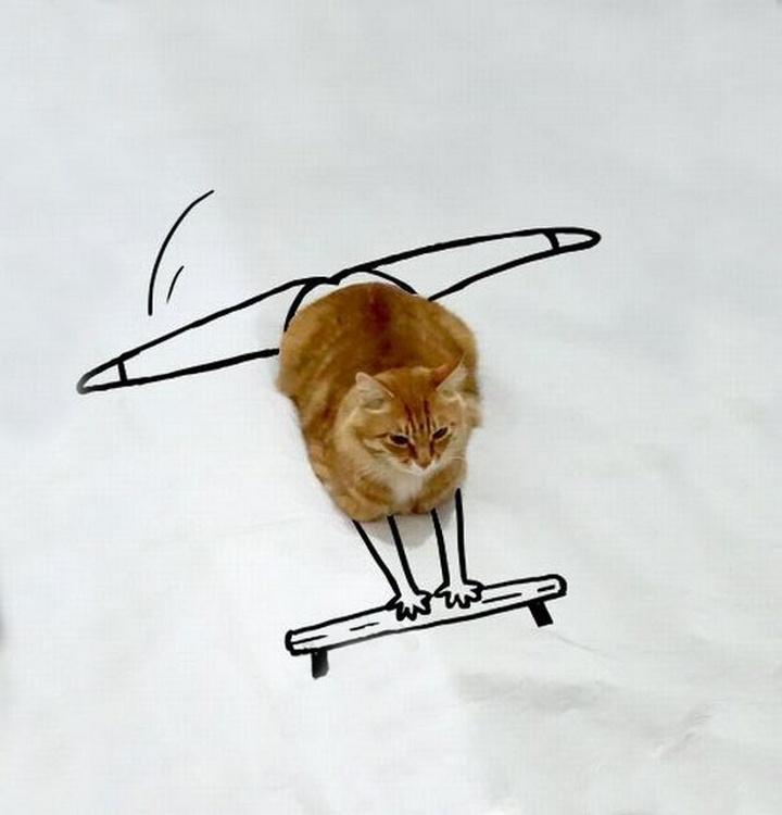 Está haciendo gimnasia.
