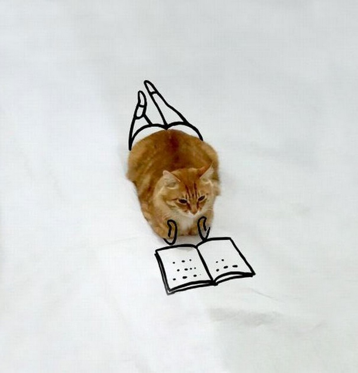 Está leyendo un libro.