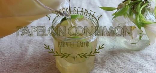 papelon_con_limon_que_rico-f