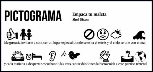 shel_dixon_-_empaca_tu_maleta_pictograma-f