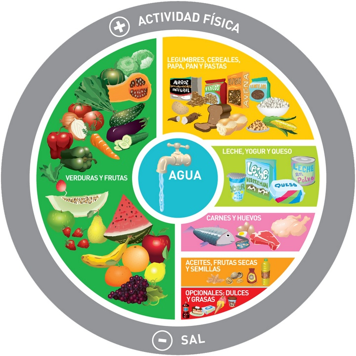 Gráfica de la alimentación diaria