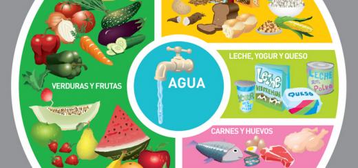 grafica_de_la_alimentacion_diaria_ministerio_de_la_salud_de_la_nacion-f