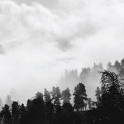 """Los días invisibles El Extraño Ecuador """"Bisontes"""" Surf rock reverberante que 'le teme más a las mañanas claras que las nubladas'"""