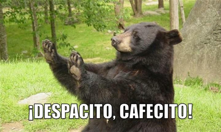 Graci-oso: ¡Despacito, cafecito!