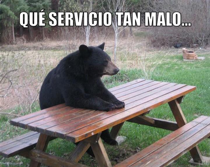 Graci-oso: Qué servicio tan malo...