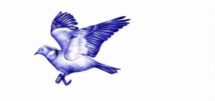 Una paloma mensajera