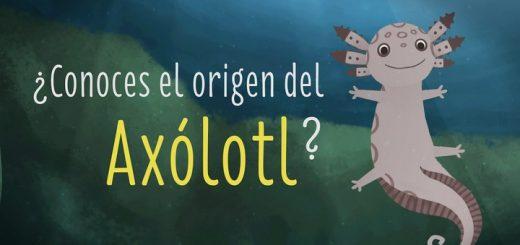 El origen del axólotl