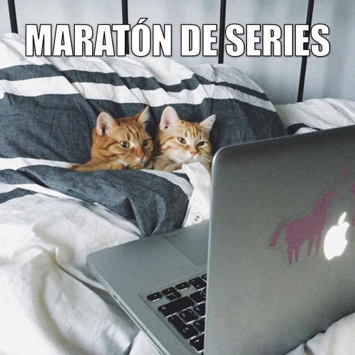 Miáucoles: Maratón de series