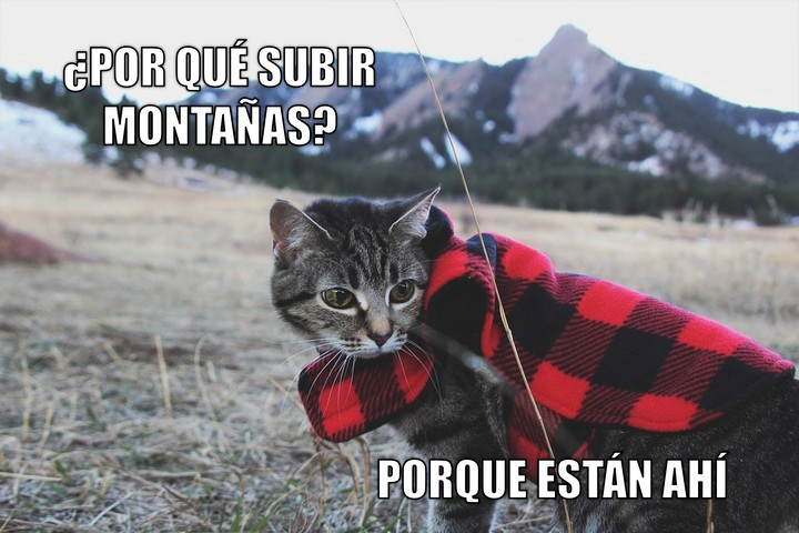Miáucoles: ¿Por qué subir montañas? Porque están ahí