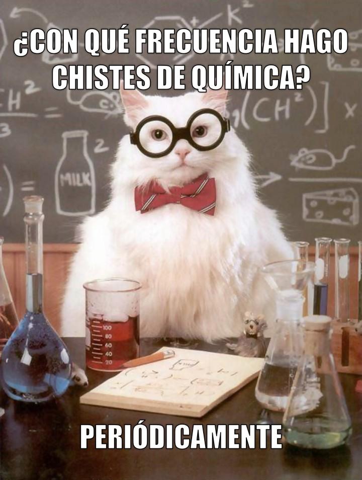 Miáucoles: Gato Químico: ¿Con qué frecuencia hago chistes de química?