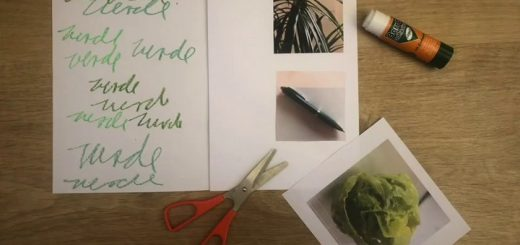 Crea un libro de artista con Elssie Ansareo