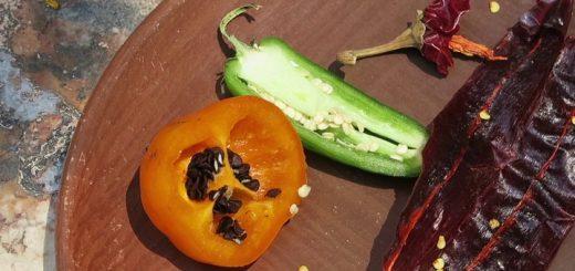 Alimento y patrimonio cultural: El chile