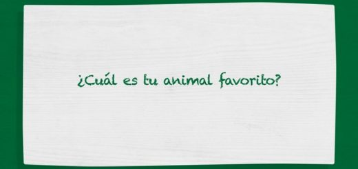 ¿Cuál es tu animal favorito?