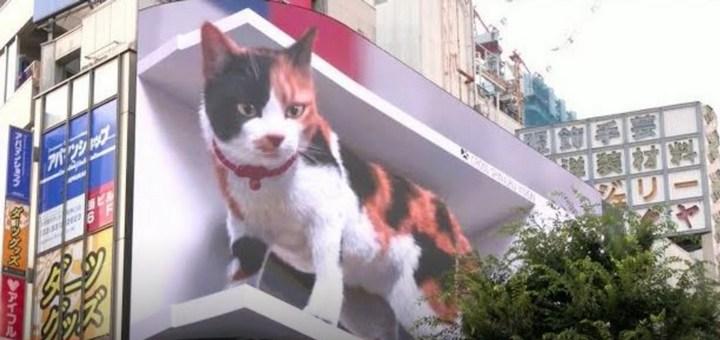 ¡Gato gigante en Tokio!